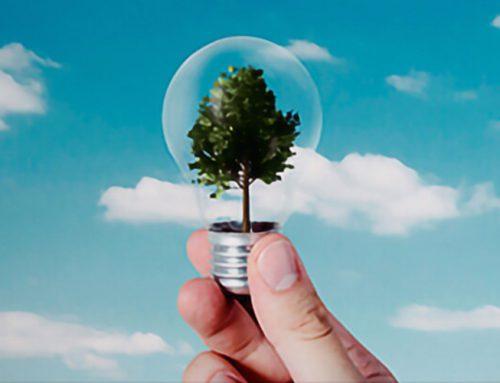 Nachhaltige IT und ihre Bedeutung für KMU